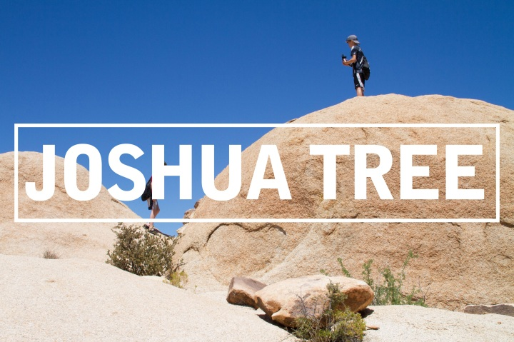 Joshua Tree National Park : Family Road Trip 2018